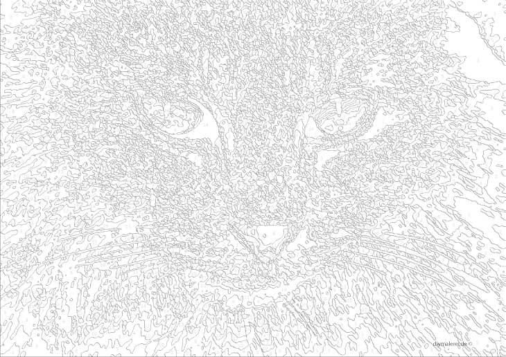 Malen Nach Zahlen Katze Zum Ausdrucken