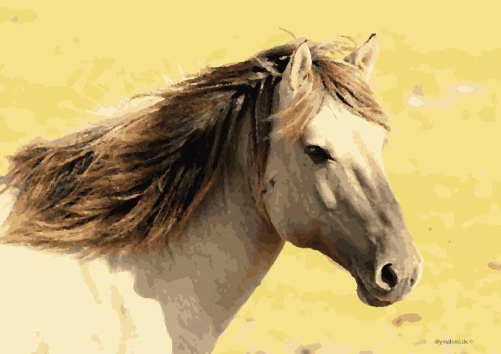 Malen Nach Zahlen Pferde Zum Ausdrucken Kostenlos Herunterladen