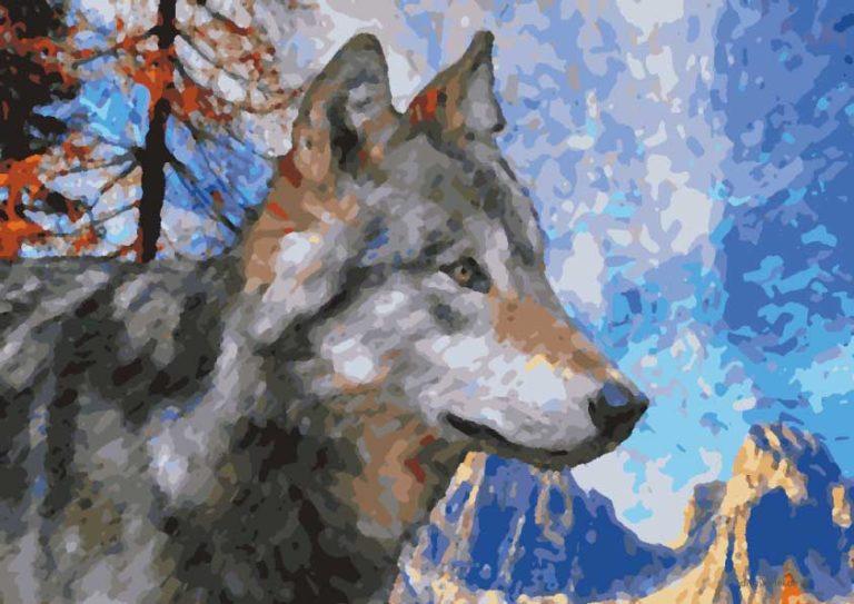malen nach zahlen wolf zum ausdrucken