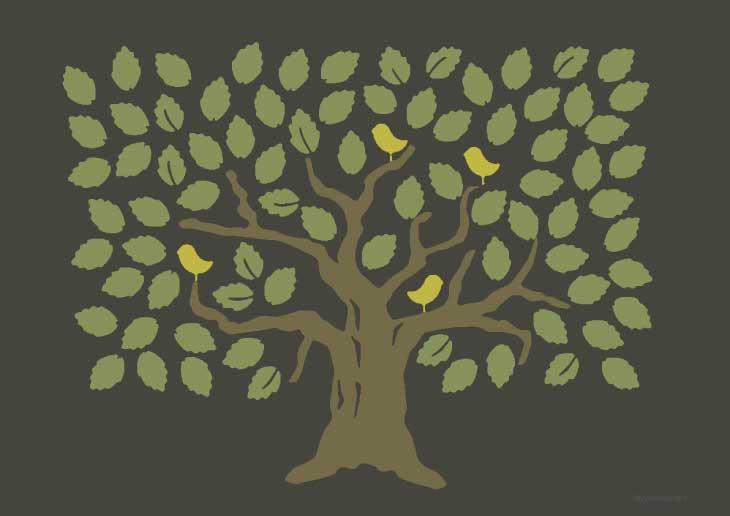 Malvorlagen Baume Und Palmen Ausmalbilder Fur Kinder 4