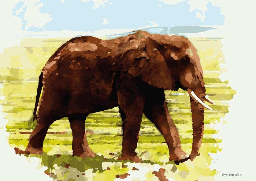 malen nach zahlen elefant gratis herunterladen